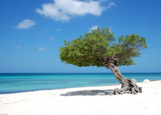 Easter Aruba Package
